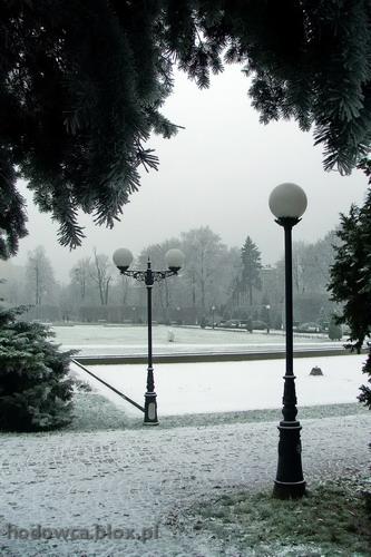 Matejki park