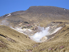 IMG_4019 (kenorrha) Tags: newzealand nznorthisland scenicsnotjustlandscapes