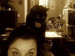 Lucy on My Shoulder