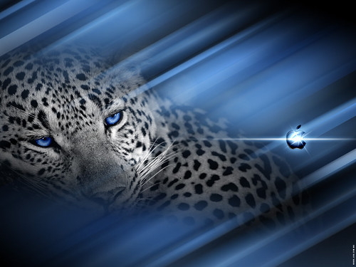 mac os leopard wallpaper. Mac OSX Leopard
