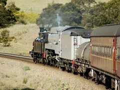 Rolling to Sydney (Wobsy) Tags: train rail railway steam locomotive streamlined 3112 tankengine southernhighlands sclass c38 3801 c30 30class 3801limited 38class