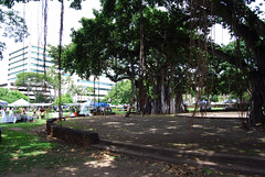under the banyan tree (nemuneko.jc) Tags: tree hawaii fair booths honolulu banyan nunu taotaomona