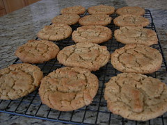 peanut butter oatmeal cookies (Fingers In The Frosting) Tags: home kitchen cookies dessert baking sugar oatmeal sweets recipes peanutbutter