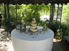 Saul and Ciera's Wedding Cake