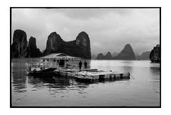 fisherman village (fly) Tags: leica film blackwhite asia vietnam fly simonkolton