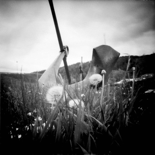 Anchor and dandelion clocks pinhole image