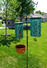 Topsy Turvy troubles (telaine) Tags: garden planters topsyturvy