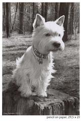 (,eleott) Tags: dog friend bart