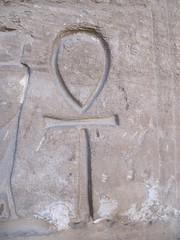 Symbol of Longevity and Vitality