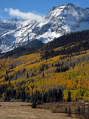 Majesty (vix227) Tags: autumn trees mountains fall nature yellow forest woods scenery colorado snowcapped foliage evergreen abc telluride aspen ridgway sanjuanmountains canong godscreation supershot mountsneffels dallascreek