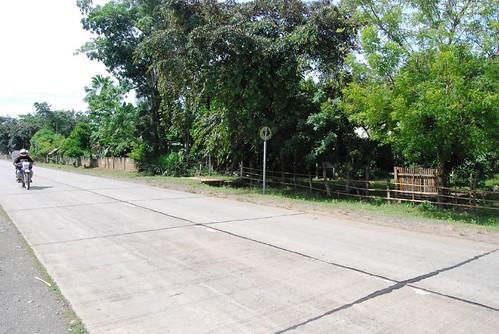 bohol roads