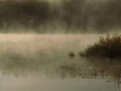 Morning Mist (ski 9) Tags: autumn mist lake fall water fog pond newengland newhampshire morningmist chocorua