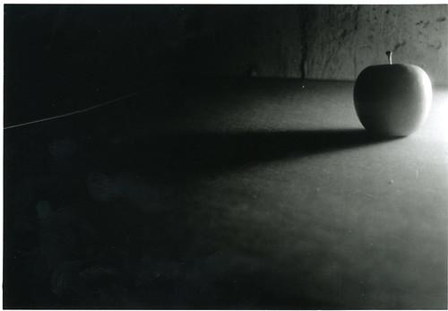 dannie apple shadow