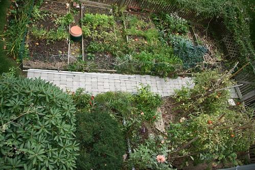 garden nov 1