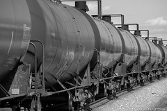 Tank Cars (Jim Frazier) Tags: railroad blackandwhite bw abstract industry monochrome up train point vanishingpoint illinois industrial pattern commerce technology machine engineering railway manipulation business machinery commercial infrastructure april unionpacific desaturated dekalb vanishing apparatus 2007 repeating railroadcars mercantile rollingstock dekalbcounty bwset tankcars v1000 q4 2008calpot