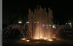 jet d'eau  Salon de Provence (Dominique Lenoir) Tags: france fountain de photo foto south brunnen fuente rhne salon provence fotografia fontana fontaine nocturne bron jetdeau fotografa bouches 13300 provencesalon dominiquelenoir