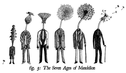 The Seven Ages of Mandelion / Jon Turner