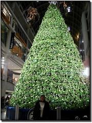 Ho Ho Ho... !   Merry Christmas...!