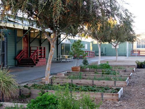 Central Elementary School Garden