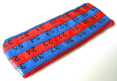 Red and Blue Measuring Tape Case