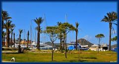 Port BODRUM Yalikavak marina  plus (yilenes) Tags: marina turkey turkiye bodrum turchia turkei yalikavak mailciler