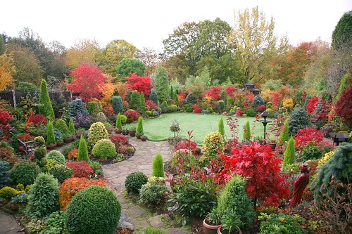 Garden November