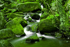 Padley Gorge, Derbyshire, UK (jogorman) Tags: uk inglaterra england white green water rock river flow waterfall moss rocks stream europa europe estate derbyshire peakdistrict h2o angleterre gorge brook flowing chesterfield albion longshaw estates inghilterra padley   royaumeuni  grandebretagne supershot  jamesogorman oldblighty