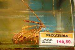 DSC_0018 (sener_tr) Tags: barcelona travel vacation animal shop d50 photo spain nikon europa europe photographer market shrimp prawns catalonia espana photograph shops lobster seafood animales catalunya animaux deniz animali shrimps tier prawn dyr gezi shopfronts espanya avrupa tezgah hayvan mağaza barselona seyahat balık alışveriş ispanya dükkanlar dükkan turkishphotographer ürünü katalunya karides dukkan zwierzat dukkanlar magaza pavurya istakoz katalonya zvirat animalsk dierlijke elainten animaliskt mağazalar magazalar