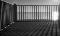 Lines (4foot2) Tags: brighton seafront seaside seawater sea sun contrejour intothesun fence lines leadinlines shadow shadows analogue film filmphotography 35mmfilm 35mm oldfilm outofdatefilm expiredfilm experimental kodak kodakrecordakdacomatica5461 recordak dacomatic 5461 microfilm rodinal standdevelop olympus rc35 olympusrc35 rangefinder 2017 fourfoottwo 4foot2 4foot2photostream 4foot2flickr streetphoto streetshot street streetphotography