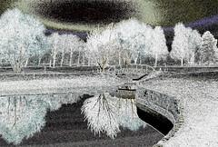 12-03-15 rsb inv rauh sonauf brück dsc0988 (u ki11 ulrich kracke) Tags: invers rsb sonnenaufgang spiegelung trauerweide zweigdünn