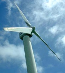 View of a wind turbine