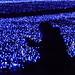 青光の波間