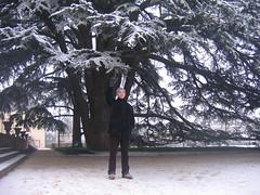 Dec 2007 Christmas in Frankfurt 067 (digitalfemme) Tags: snow germany badhomburg walkinthesnow