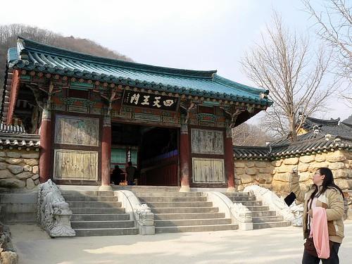 Korea (463)