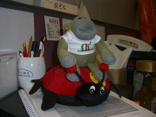 2008-01-11: Ride 'Em IUM Monkey!