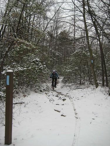 Saturday In The Snow