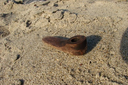 Things kids find on the beach