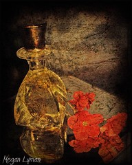 Grandma's Perfume (*Megan.) Tags: platinumheartaward march42008