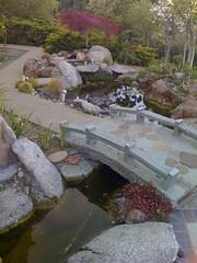 SHDH24: Oriental Garden