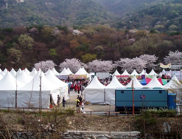 Donghaksa Spring Fair (1)
