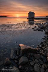 Ending summer (Marco Calandra Photography) Tags: sweden brottkärr cabin goteborg gothenburg göteborg sea stones sunset västragötalandslän svezia se tramonto summer