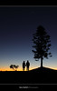Third Point. ([ Kane ]) Tags: morning sky people tree silhouette dawn julia australia brisbane explore qld queensland kane mal wellingtonpoint gledhill sillioutte kanegledhill kanegledhillphotography