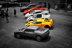 Choose one and go..!! (Tareq Abuhajjaj | Photography & Design) Tags: auto red bw moon black cars car sport yellow photography one design photo lotus elise go gear saudi arabia lamborghini riyadh bentley choose gallardo tareq  lamborghinis alreem       tareqdesigncom tareqmoon tareqdesign