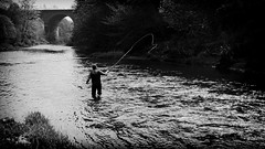 Cast into the past (buddah1888) Tags: blackandwhite canon river arch glasgow salmon railway cast kelvin flyfishing casting parr browntrout flyrod midstream g10 buddah1888