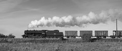 WD 90733 (MickyB1949) Tags: blackandwhite monochrome train leicestershire smoke railway steam wd freight loughborough preservation steamtrain quorn greatcentralrailway gcr austerity 90733