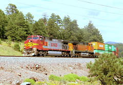 "BNSF westbound freight, led by GE C44-9W #730, still in ""warbonnet"" colors, near Flagstaff, Arizona, US, August 25, 2005 (Ivan S. Abrams) Tags: arizona santafe minnesota electric route66 diesel canon20d ivan trains flagstaff globalization getty clovis abrams ge railways tehachapi bnsf belen locomotives cajon gettyimages logistics abo generalelectric willmar smrgsbord tucsonarizona atsf warbonnet riordan flagstaffarizona eriepennsylvania railfans 12608 c449w freightcontainers santaferailway movingtrains onlythebestare dieselelectriclocomotives ivansabrams trainplanepro generalelectriclocomotives pimacountyarizona safyan arizonabar intermodalfreighttrains arizonaphotographers ivanabrams cochisecountyarizona tucson3985 getransportationsystems gettyimagesandtheflickrcollection copyrightivansabramsallrightsreservedunauthorizeduseofthisimageisprohibited tucson3985gmailcom ivansafyanabrams arizonalawyers statebarofarizona californialawyers copyrightivansafyanabrams2009allrightsreservedunauthorizeduseprohibitedbylawpropertyofivansafyanabrams unauthorizeduseconstitutestheft thisphotographwasmadebyivansafyanabramswhoretainsallrightstheretoc2009ivansafyanabrams abramsandmcdanielinternationallawandeconomicdiplomacy ivansabramsarizonaattorney ivansabramsbauniversityofpittsburghjduniversityofpittsburghllmuniversityofarizonainternationallawyer"