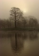 Mill farm mist (Mr Grimesdale) Tags: mist lake reflection tree water fog sony knowsley merseyside kirkby capitalofculture mrgrimsdale stevewallace capitalofculture2008 liverpoolcapitalofculture2008 dsch2 europeancapitalofculture2008 millfarm 15challengeswinner photofaceoffwinner liverpoolcapitalofculture pfogold mrgrimesdale grimesdale