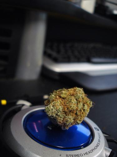 weed strains