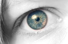 behind grey eyes