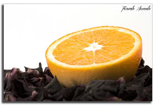 Vitamin được phân loại như thế nào?
